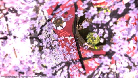 桃の花、ひら、ひら、ひら