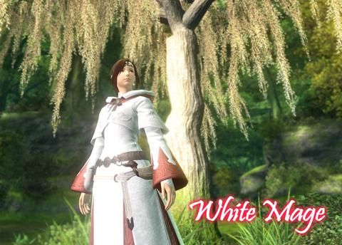 白き魔導士
