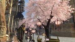 ウルダハの桜〜2