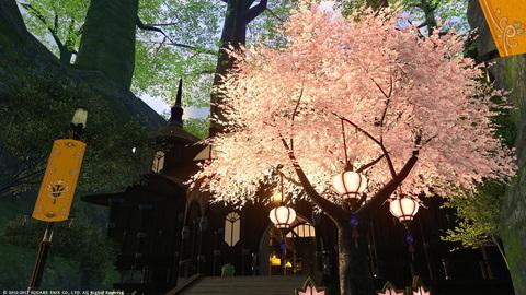 グリダニアの桜〜1.jpg