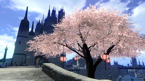 リムサの桜〜1.jpg