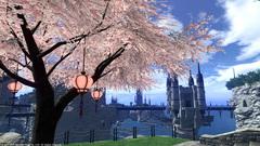リムサの桜〜3.jpg