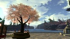 リムサの桜〜6.jpg
